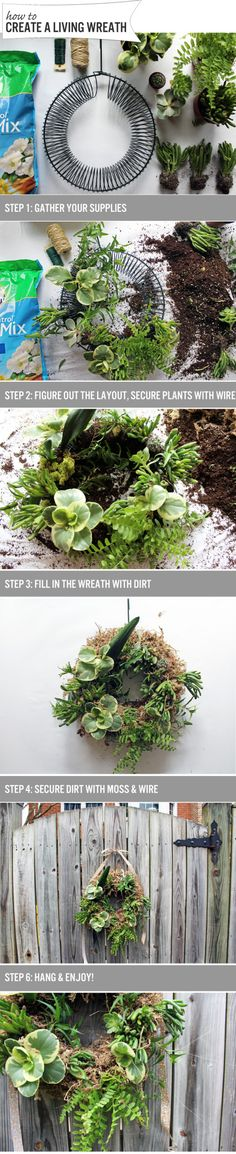 How to: Create a Living Wreath | www.theanatomyofdesign.com