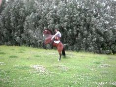 turn the sound down loud wind -------              Yuri Volodchenkov and Leghion jumping rope - YouTube
