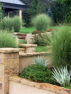 A grassy lawn is divided by a stone wall and several plants, including ornamental grasses, in this old world landscape design