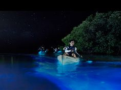 Truly a sight to see, Mosquito Bay — located on the Puerto Rican island of Vieques — offers one of the most unusual water experiences you can have. Also known as Bioluminescent Bay, it gets its name from microscopic organisms that reside in the water and generate a phosphorus blue glow when agitated.