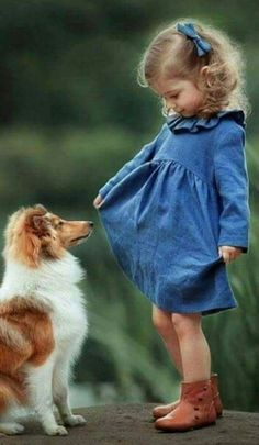The Shetland Sheepdog originated in the and its ancestors were from Scotland, which worked as herding dogs. These early dogs were fairly Precious Children, Beautiful Children, Beautiful Babies, Dogs And Kids, Animals For Kids, Cute Animals, Cute Kids, Cute Babies, Baby Kids