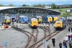 Deltic locomotives at the anniversary event held at the National Railway Museum, Shildon