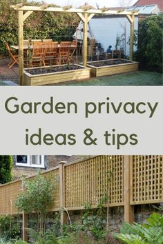 Garden privacy screens and ideas for small gardens and backyards Garden Privacy Screen, Privacy Trellis, Garden Trellis, Privacy Screens, Backyard Shade, Small Backyard Pools, Backyard Water Feature, Shade Garden, Small Garden With Pool Ideas