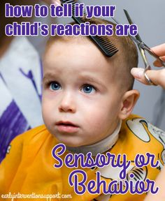 Child Reactions: Sensory Issues or Behavior Driven?