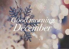 Good morning, December shared by Sophiaaa on We Heart It Hello December Images, December Pictures, Hello November, Fb Cover Photos, Cover Photo Quotes, Picture Quotes, December Quotes, Love Month, Monthly Quotes