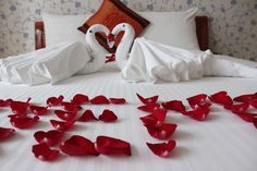 http://madammoonguesthouse.com/madam-moon-guesthouse/room-rates / double room - 06