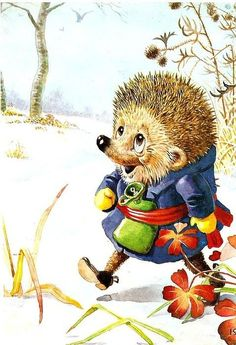 Look at his little hot water bottle! Illustrations and postcards Racey Helps Hedgehog Art, Cute Hedgehog, Cartoon Books, Cute Little Things, Jolie Photo, Woodland Creatures, Beatrix Potter, Christmas Art, Clipart