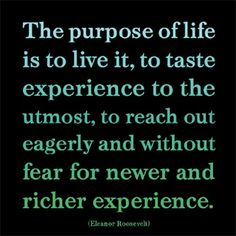 The purpose of life doesn't exist in one quote or definition, it is a construction—over a lifetime. The words of the fabulous Eleanor Roosevelt can help us along the path. Great Quotes, Me Quotes, Motivational Quotes, Inspirational Quotes, Wisdom Quotes, Positive Quotes, Inspiring Sayings, Quirky Quotes, Inspiring Pictures