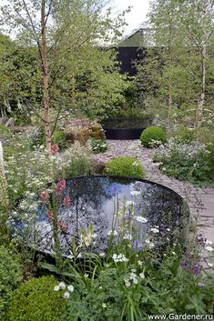 Chelsea Flower Show 2014 Show Gardens Vital Earth The Night Sky Garden Дизайнер Harry Rich David Rich
