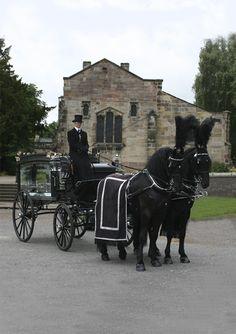 horse-drawn hearses on tumblr - Google Search