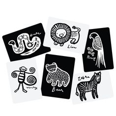 Art Flash Cards Jungle