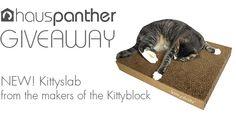 KittyslabGiveaway