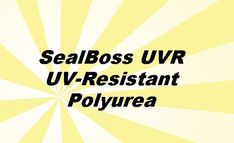 SealBoss 6500 UVR is a new generation polyurea joint filler formulated to resist fading from ultraviolet light. To learn more click below. #floorrepair Concrete Repair Products, Ultra Violet, Flooring, Learning, Studying, Wood Flooring, Teaching, Floor, Onderwijs