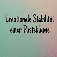Emotionale Stabilität einer Pusteblume.