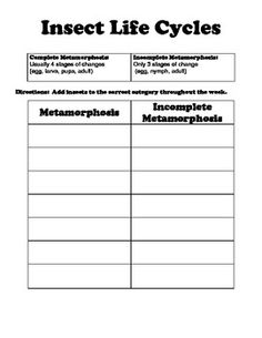 29 Best 3rd Grade Science Unit Insects Spring 2013 Images On
