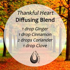 "Thankful Heart Diffusing Blend uses Ginger, Cinnamon, Coriander, and Clove essential oils. Please ""LIKE"" me on Facebook: https://www.facebook.com/EOAdventureswithBecky ~~ Need to purchase oils? You can find out more information at https://beta.youngliving.com/vo/#/signup/start?site=US&sponsorid=2385830&enrollerid=2385830  ~~"