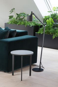 Vipp side table and floor lamp in dark colours contrast the grennery and dark green velour sofa