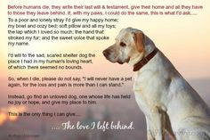Heart-wrenching poem from an old dog to his owner.  What your dog would ask from you when he crosses over to the Rainbow Bridge.