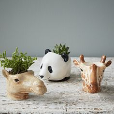 These hand painted animal egg cups would make a great gift for the animal lover in your life, they're full of personality. Don't like eggs? These are also great planted up with little succulents or as pinch pots for your salt and pepper!