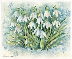 Flowers in the snow; By Susan Winget Watercolor Disney, Easy Watercolor, Watercolor Cards, Watercolor Flowers, Watercolor Paintings, Winter Illustration, Watercolor Illustration, Easy Paintings, Beautiful Paintings