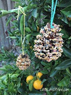 pinecone bird feeder - get the kids helping with this one ahead of Big Garden #Birdwatch this year!
