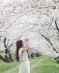 ととさんはInstagramを利用しています:「桜より美しいカメラ女子❁」