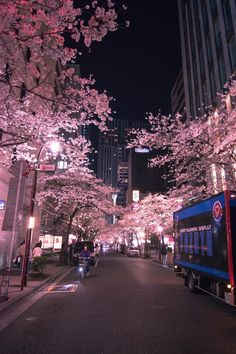 Cherry blossom trees at night Smart Phone Wallpapers iphonewallpape Cherry blossom trees at night Smart Phone Wallpapers iphonewallpape Shexy Bee ShexyBee Mobile Wallpapers Cherry blossom trees at nbsp hellip backgrounds aesthetic japan Aesthetic Japan, Night Aesthetic, City Aesthetic, Japanese Aesthetic, Travel Aesthetic, Aesthetic Anime, Makeup Aesthetic, Aesthetic Backgrounds, Aesthetic Wallpapers