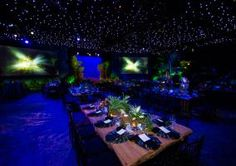 Ceiling!  A crew of more than 80 people spent four days working with turf flooring, waterfalls, and more than 600 plants and trees to transform a stark white airplane hangar into a lush tropical oasis for the Onyx Pharmaceuticals annual award banquet in Fort Lauderdale in 2011. To make the 120 guests feel as if they were having dinner in a clearing in the woods, decorators used fiber-optic draping to create a sky above and emerald green turf carpeting to simulate the forest floor below.
