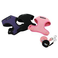 Snygg Enkel Meshy Harness Vest med koppel för husdjur Hundar (blandade färger, storlekar) – USD $ 12.79