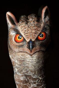 owl hand...