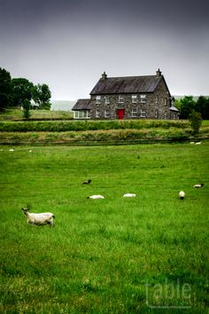 Countryside, County Kerry, Ireland.I want to visit here one day.Please check out my website thanks. www.photopix.co.nz