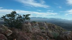 View of the Organ Mountains