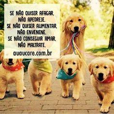 Por mais respeito aos animais. #regram @auau_care #frases #conscientização #animais #pets #respeito