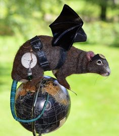 "Steampunk  ""Rats Rule"" Brown River Rat Life Size OOAK Artist Needle felt Sculpture by Stevi T.    Free Shipping by SteviT on Etsy"