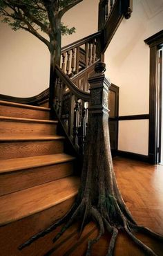 """Druids Trees:  """"Tree-trunk"""" staircase."""