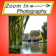 Stock Photo: Boston Commons by Zoom In Photography | Teachers Pay Teachers