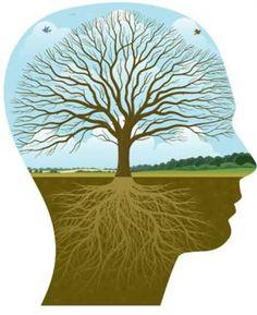 Como manejar la ansiedad mediante la terapia dialectico-conductual