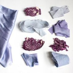 Red Cabbage The leaves of the red cabbage plant can make periwinkle, lavender and icy blue colors. Tiny Flowers, Flower Petals, Red Flowers, Indigo Plant, Indigo Dye, Chartreuse Color, Peach Colors, Cabbage Plant, Red Cabbage
