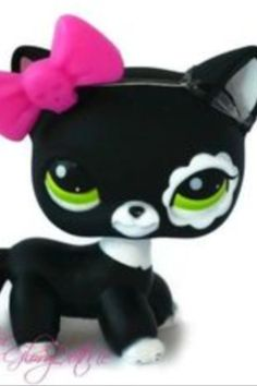 Littlest Pet Shop LPS Black White Tabby Kitty Cat✵Flower Green Eyes Blythe. Little Pet Shop, Little Pets, Lps Cats, Kittens, Lps Clothes, Lps Shorthair, Lps Accessories, Material Didático, Lps Littlest Pet Shop