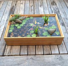 Beautiful Miniature Koi Pond in bamboo w/ wall by rezinology