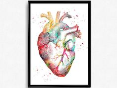 Human Heart watercolor print medical art heart poster