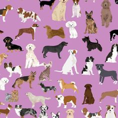 Purple Dog Fabric - Cute Dog Purple Breed Person Dog Lovers Dog Quilting By Petfriendly - Cotton Fabric By The Yard With Spoonflower