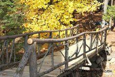 building an adirondack bridge, diy, landscape, outdoor living, woodworking projects