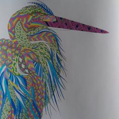 98 Best ANIMAL KINGDOM Colouring Book Images On Pinterest