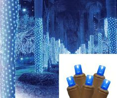 2' x 8' Blue LED Net Style Tree Trunk Wrap Christmas Lights - Brown Wire