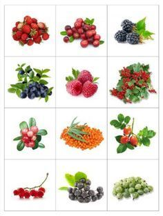 Fruit And Vegetables Flashcards 55 Ideas Teaching Kindergarten, Teaching Kids, Kids Learning, Fruit And Veg, Fruits And Vegetables, Baby Shower Fruit, Kids Background, Montessori Materials, Fruit Drinks