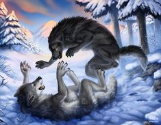 Winter Playground by Nimrais.deviantart.com on @deviantART This is my contribution to the Werewolf Calendar 2015! Besides gloomy weather and puddles of mud, winter has also its beautiful sides :)