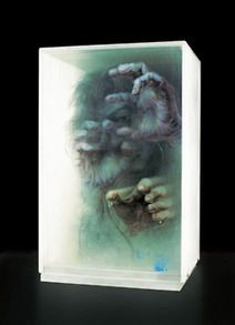 Artist Xia Xiaowan - 3D paintings on glass. Xia...