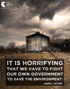 It is horrifying that we have to fight our own government to save the environment. ~ Ansel Adams.