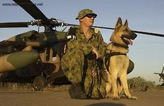 Animals at War Military Working Dogs, Military Dogs, Military Police, Usmc, Once A Marine, Australian Defence Force, I Like Dogs, War Dogs, Man And Dog